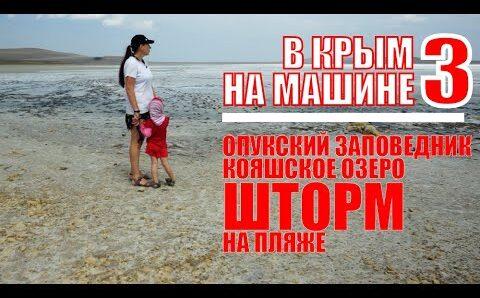 В Крым на машине 3 — Опукский заповедник — Кояшское озеро — Танки — Шторм
